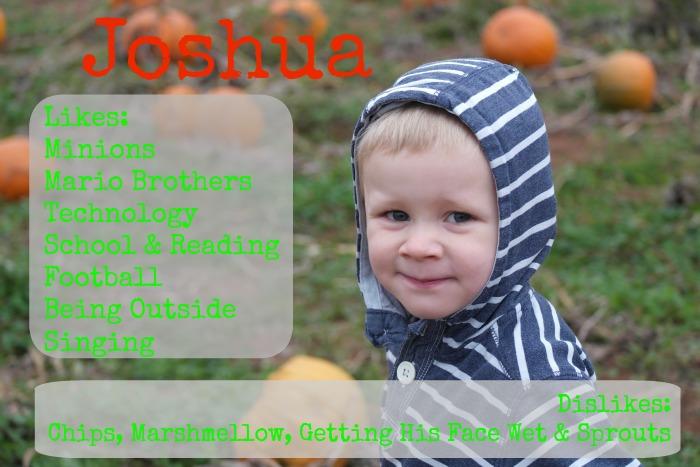 Joshua's likes and dislikes