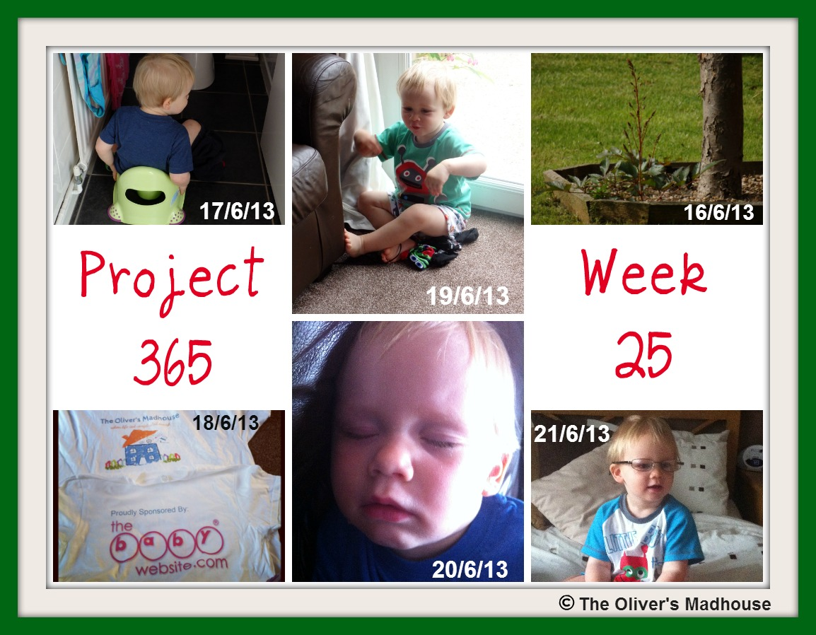 My Week That Was - Project 365 Week 25 The Oliver\\\'s Madhouse