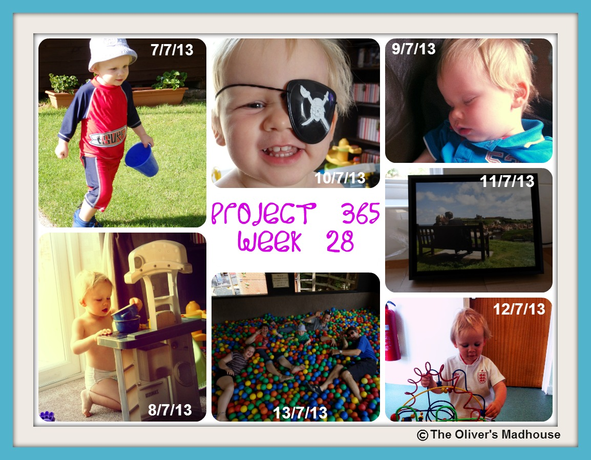 My Week That Was - Project 365 Week 28 The Oliver\\\'s Madhouse