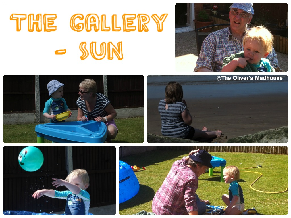 The Gallery - Sun The Oliver\\\'s Madhouse