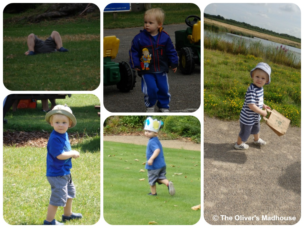 Active Family - The Wonder Of Walking The Oliver\\\'s Madhouse