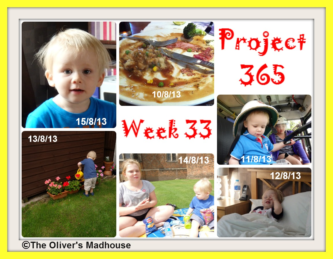 My Week That Was - Project 365 Week 33 The Oliver\\\'s Madhouse