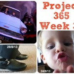 My Week That Was – Project 365 Week 35