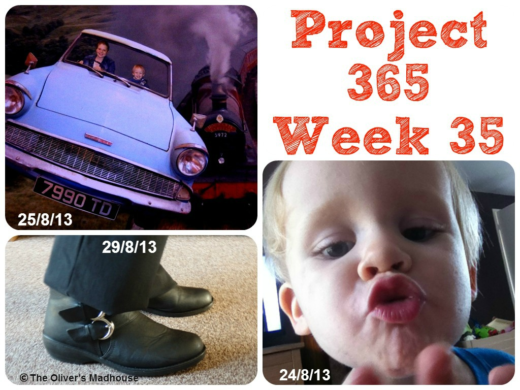 My Week That Was - Project 365 Week 35 The Oliver\\\'s Madhouse