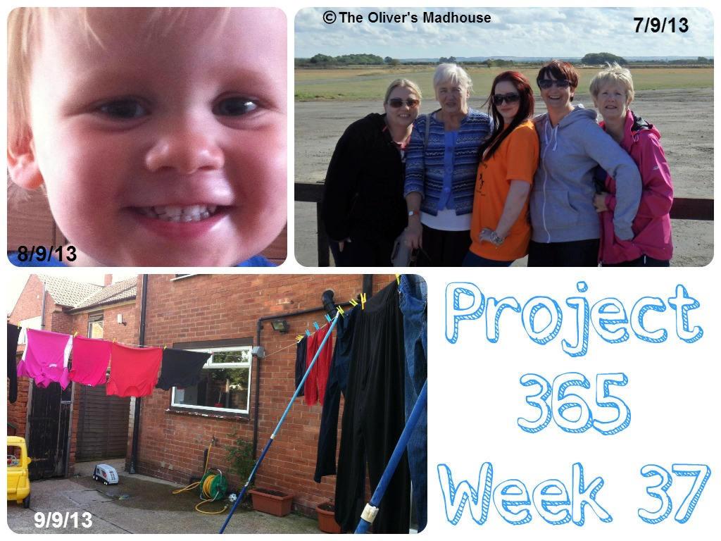 My Week That Was - Project 365 Week 37 The Oliver\\\'s Madhouse