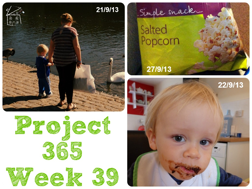 My Week That Was - Project 365 Week 39 The Oliver\\\'s Madhouse