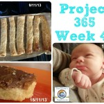 My Week That Was – Project 365 Week 46 & 47