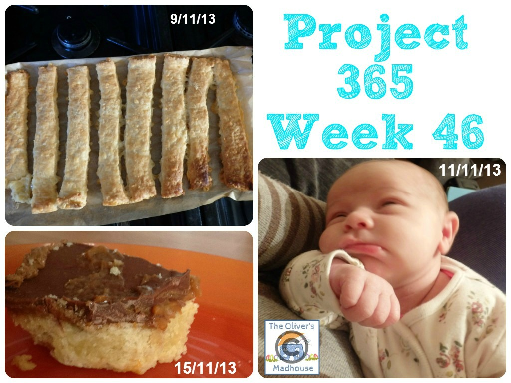 My Week That Was - Project 365 Week 46 & 47 The Oliver\\\'s Madhouse