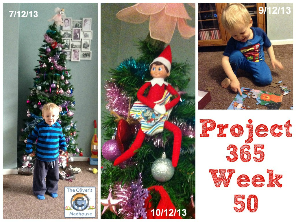 My Week That Was - Project 365 Week 50 The Oliver\\\'s Madhouse