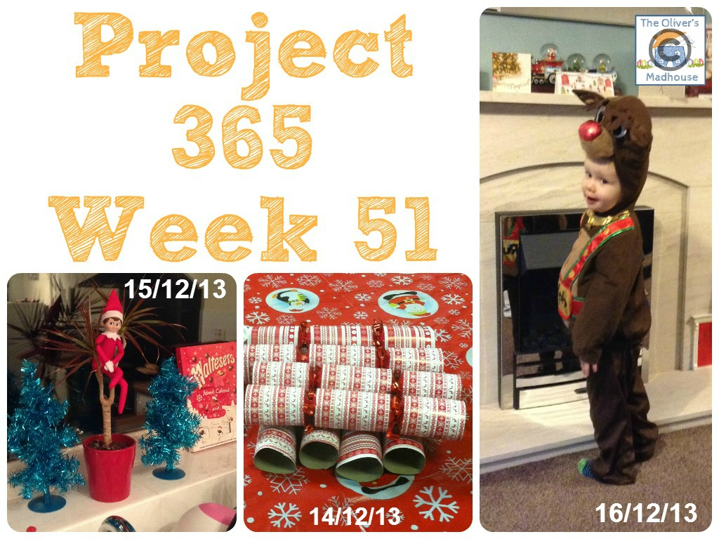 My Week That Was - Project 365 Week 51 The Oliver\\\'s Madhouse