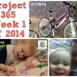 Project 365 Week 1 Of 2014