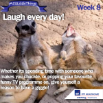 #52LittleThings Week 8 – Laugh Every Day
