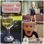 Project 365 Week 22 of 2014