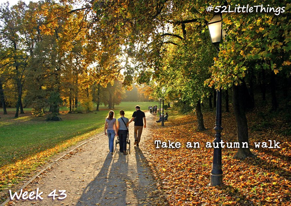 #52LittleThings Week 43 - Take An Autumn Walk The Oliver\\\'s Madhouse