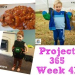 Project 365 Week 41 of 2014