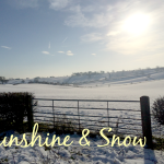 Sunshine and Snow