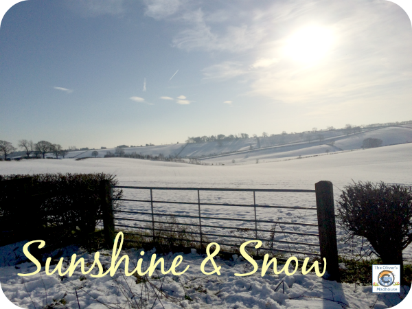 Sunshine and Snow The Oliver\\\'s Madhouse