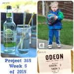 Project 365 Week 5 of 2015