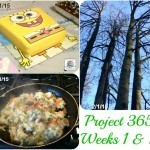 Project 365 Week 1 & 2 of 2015