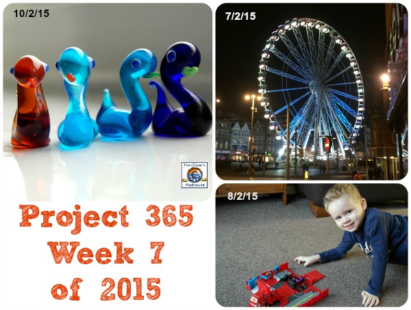 Project 365 Week 7 of 2015 The Oliver\\\'s Madhouse