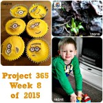 Project 365 Week 8 Of 2015