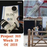 Project 365 Week 19 of 2015