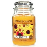 Summer Time Smells With Yankee Candles