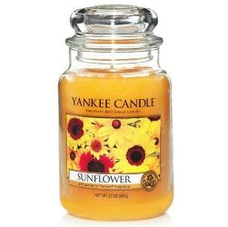 yankee sunflower-large-jar1960523