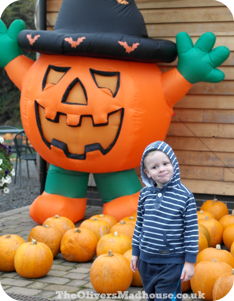 Proud Pumpkin Picking The Oliver\\\'s Madhouse
