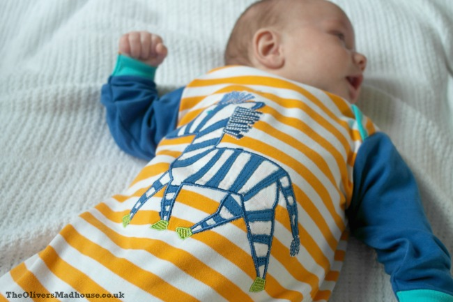 Rockin' Baby Spring/Summer 2016 Collection Review The Oliver\\\'s Madhouse