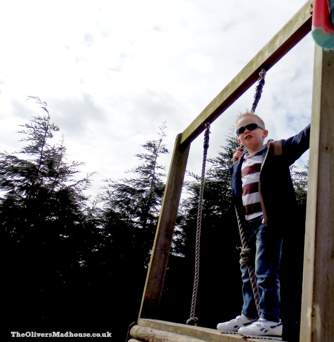 climbing to the top of the assault course