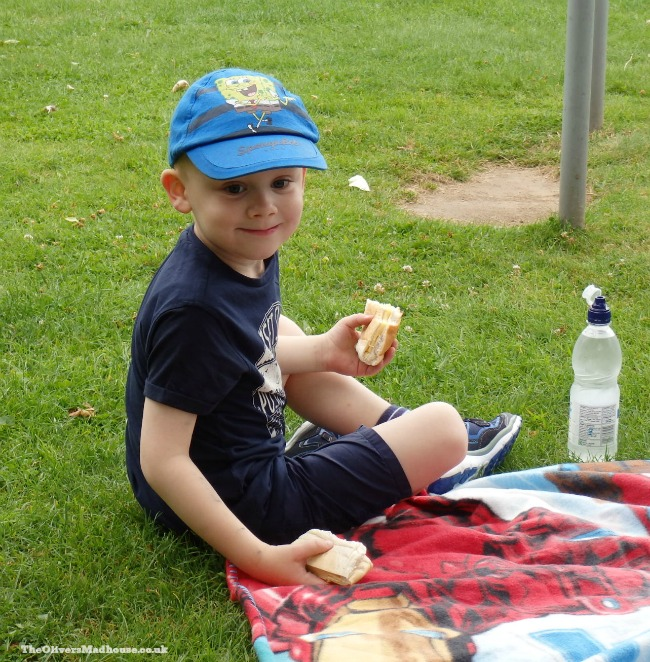 small boy eating picnic in the park