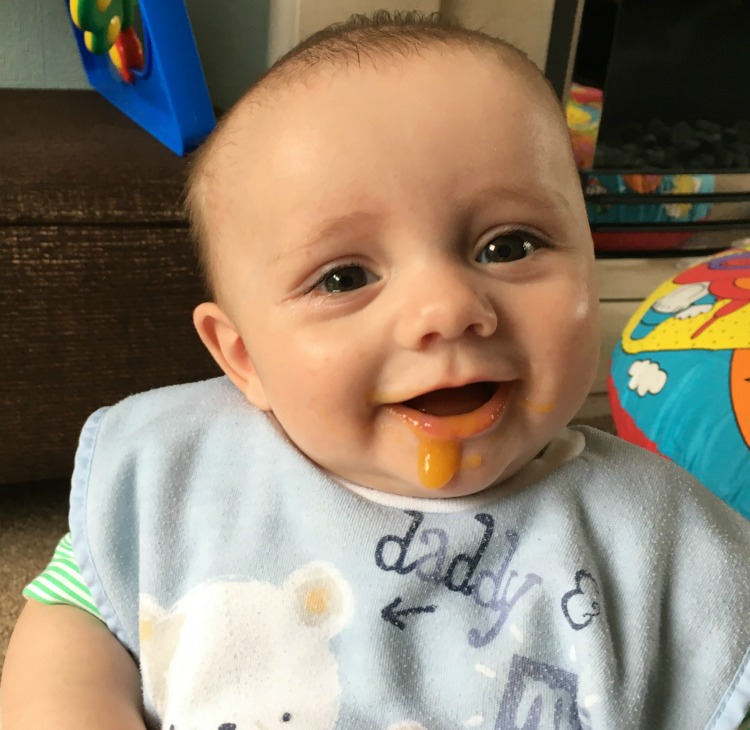 Our Summer With Mamia Organic Baby Food The Oliver\\\'s Madhouse