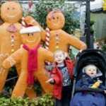 The Start Of The Festive Season – The Garden Centre