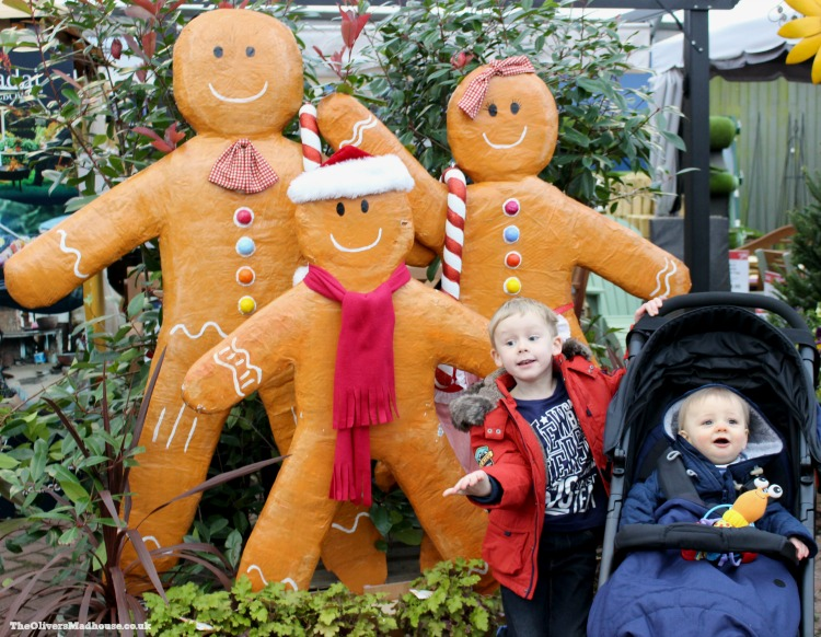 The Start Of The Festive Season - The Garden Centre The Oliver\\\'s Madhouse