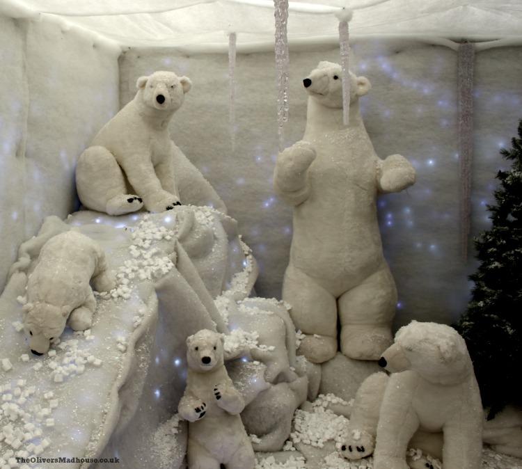 polar-bears-at-floralands