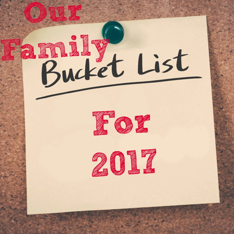 Our Family Bucket List For 2017 The Oliver\\\'s Madhouse