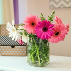 Beautiful flowers in vase on table