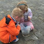 Family Camping & Things To Do In The New Forest Hampshire