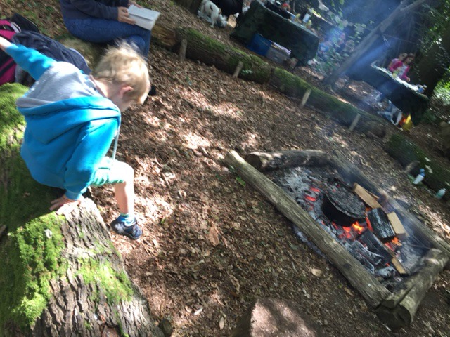 Family Camping & Things To Do In The New Forest Hampshire The Oliver\\\'s Madhouse