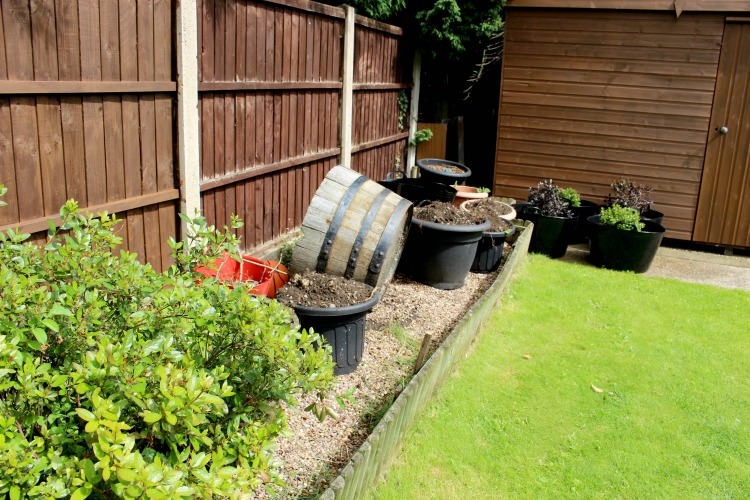A Garden Project Update The Oliver\\\'s Madhouse