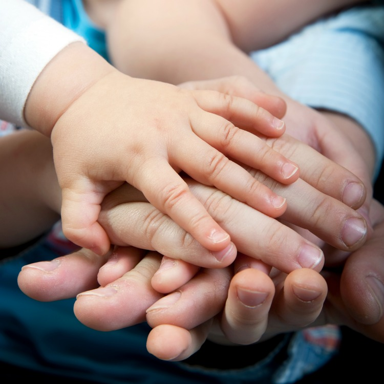 How Will Foster Care Affect My Family? The Oliver\\\'s Madhouse