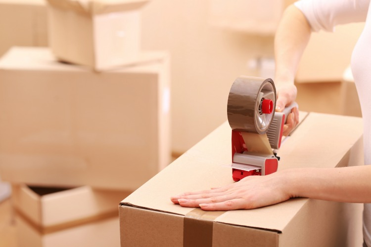 5 Top Tips To Making The Family House Move Go Smoothly The Oliver\\\'s Madhouse