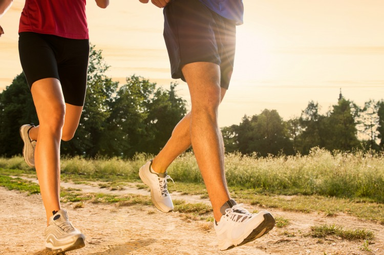3 Ways to Maintain a Healthy Lifestyle Easily The Oliver\\\'s Madhouse