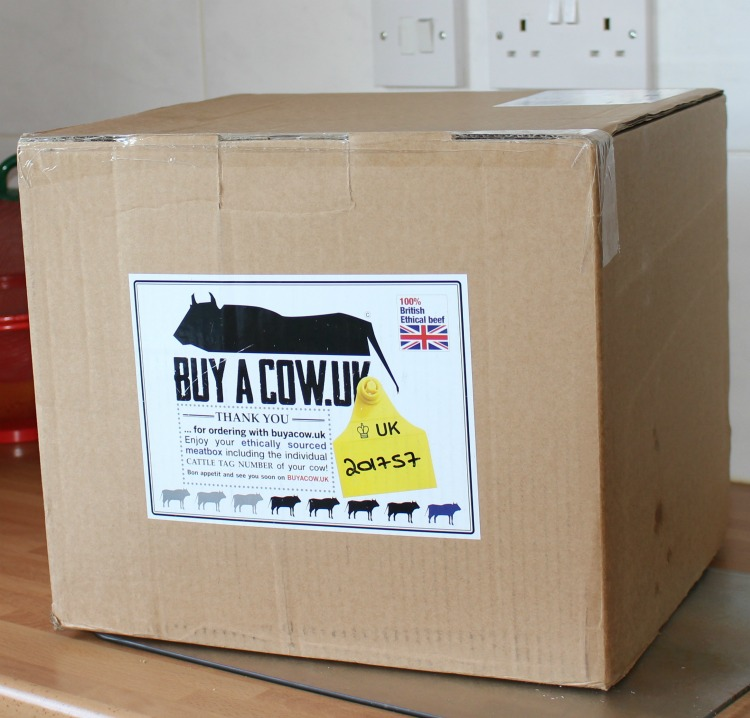 BuyACow: Affordable, Sustainable Beef - A Review The Oliver\\\'s Madhouse
