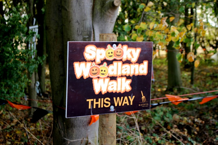 Pumpkin Picking In Nottinghamshire The Oliver\\\'s Madhouse
