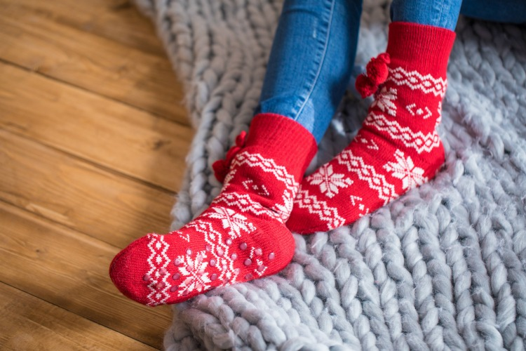 How To Have Fun Hibernating This Winter The Oliver\\\'s Madhouse