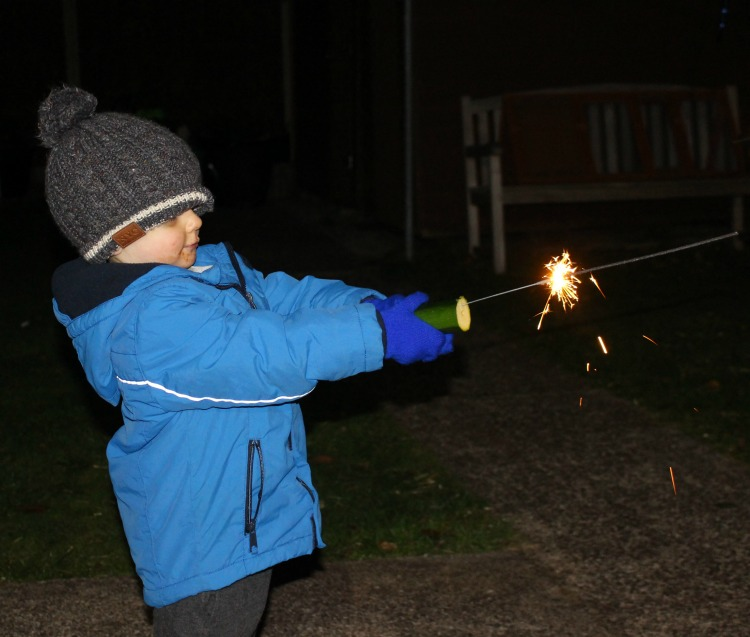 Our Family Bonfire Night 2018 The Oliver\\\'s Madhouse