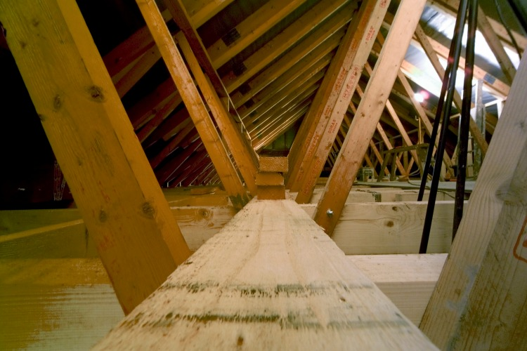 How Hard Is A House Renovation, Really? The Oliver\\\'s Madhouse
